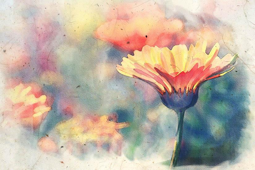 Картинки акварелью простые для начинающих срисовка, картинки