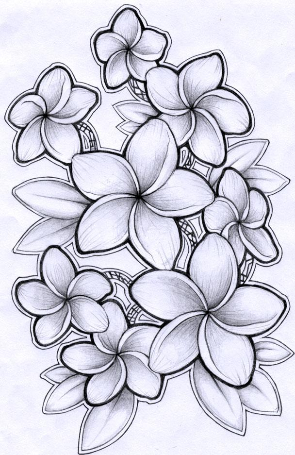 Гифки любимой, картинки цветы нарисованные карандашом