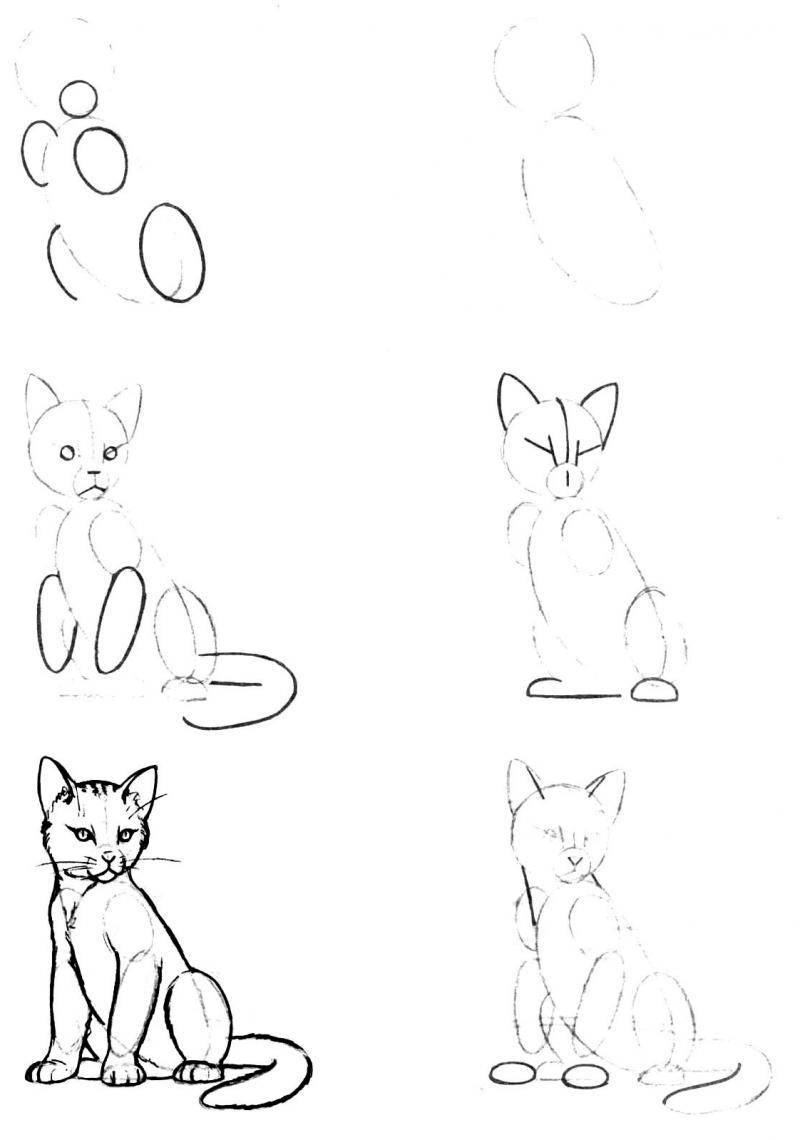 Картинки для срисовки на компьютере