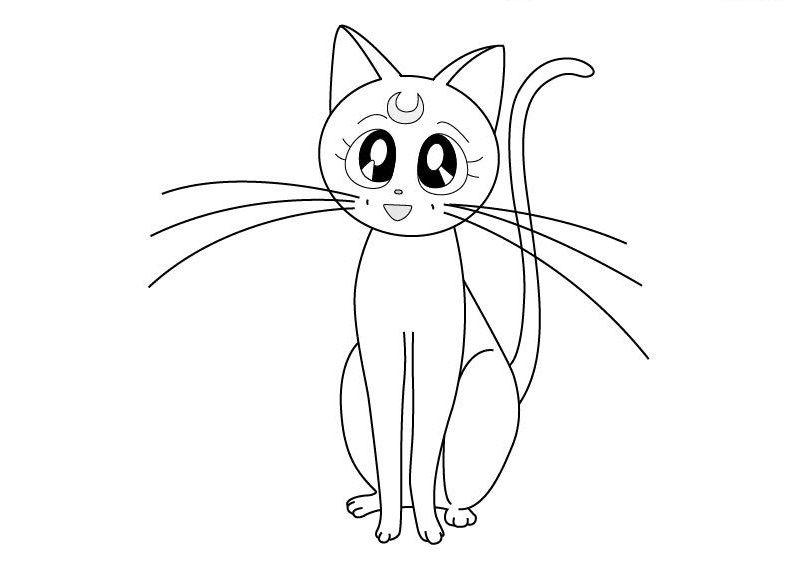 Картинка кошки для начинающих