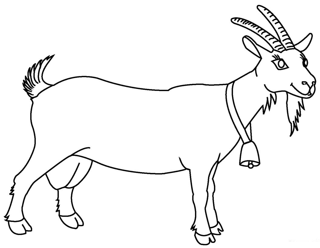 Картинка козы для детей