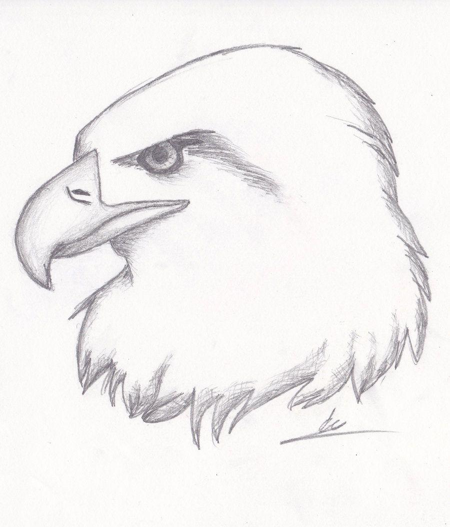 Картинки для срисовки про животных карандашом