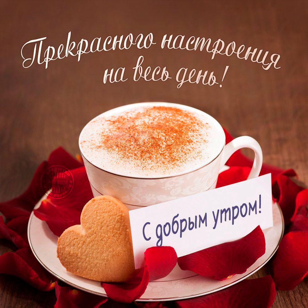 Открытки с добрым утром и хорошего дня и настроения прикольные, красивых