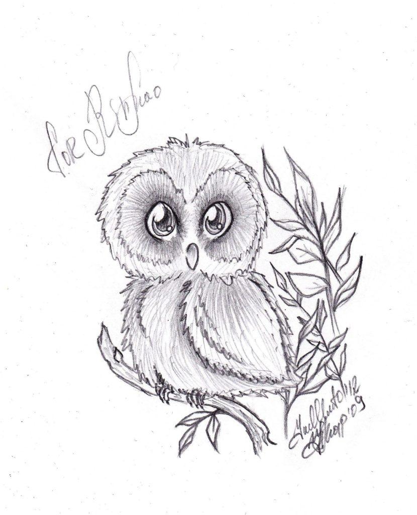Картинки совы карандашом для срисовки