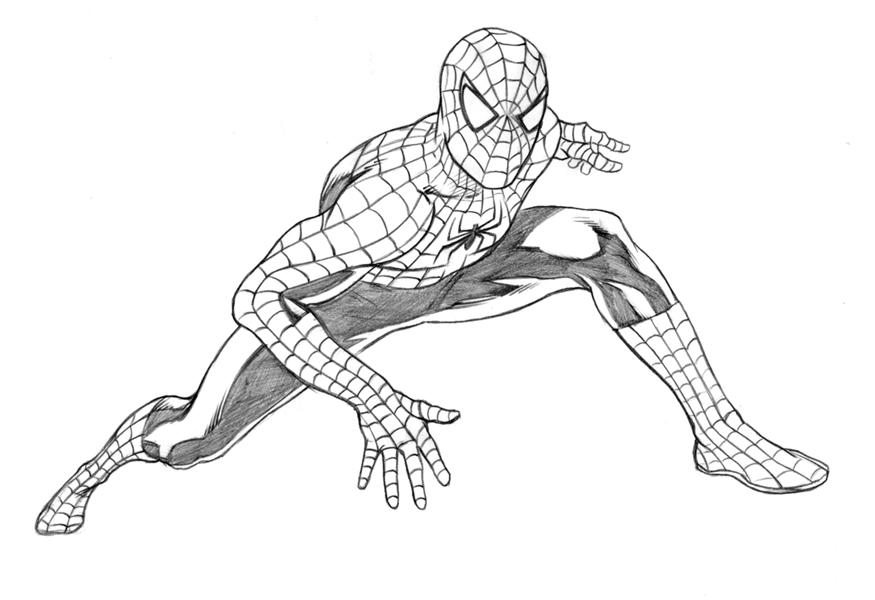 Человек паук картинки для срисовки карандашом для начинающих